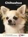 Lente Aanbieding Chihuahua + Hondenopvoeding