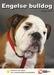 Lente Aanbieding Engelse Bulldog + Hondenopvoeding